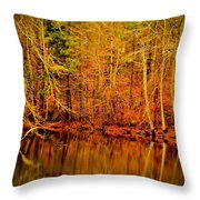 Autumn's Past Throw Pillow