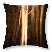 Autumn's Promise 11 Throw Pillow