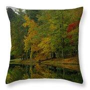 Autumns Reflection Throw Pillow