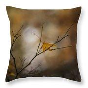 Autumns Solitude Throw Pillow