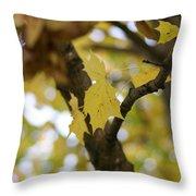 Autumn's Wondrous Colors 1 Throw Pillow