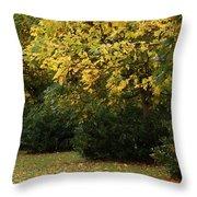 Autumn's Wondrous Colors 4 Throw Pillow
