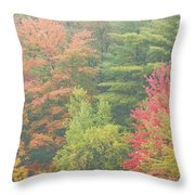Autumntrees And Fog Throw Pillow
