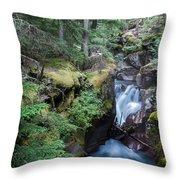 Avalanche Creek In Cedar Forest Throw Pillow