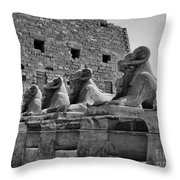 Avenue Of Sphinxes Throw Pillow