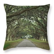 147706-avenue Of The Oaks  Throw Pillow
