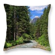 Avisio River Throw Pillow