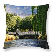 Avlon River Throw Pillow