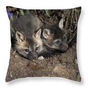 Fox-avoidance Throw Pillow