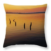 Awaiting The Sun's Return Throw Pillow