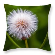 Awaiting The Wind Throw Pillow