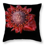Awapuhi Ko Oko'o - Torch Ginger - Etlingera Elatior - Hawaii Throw Pillow