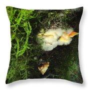 Awe Inspiring Fungi Three Throw Pillow