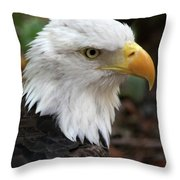 Awesome American Bald Eagle Throw Pillow