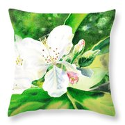 Awesome Apple Blossoms Throw Pillow