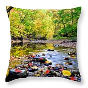 Awesome Autumn  Throw Pillow