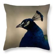 Awesome Peacock Throw Pillow