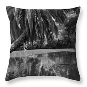 Awesome Pond 1 Throw Pillow by Denise Mazzocco