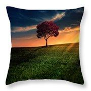 Awesome Solitude Throw Pillow