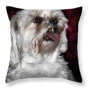 Awww....... Cute....... Awww Throw Pillow
