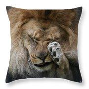 Awwwww..... #2 Throw Pillow