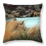 Ayer Lake Throw Pillow
