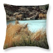Ayer Lake Throw Pillow