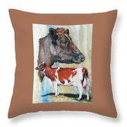 Ayrshire Cattle Throw Pillow