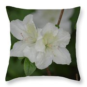 Azalea 14-2 Throw Pillow