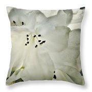 Azalea - No 1 Throw Pillow