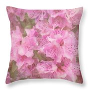 Azalea Textured Throw Pillow