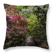 Azalea Trail Throw Pillow