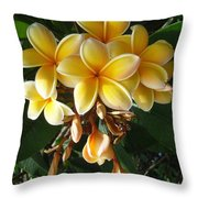 Aztec Gold Plumeria Throw Pillow