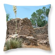 Aztec Ruins National Monument Throw Pillow