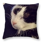 B  And N Throw Pillow