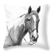 B And W Study Throw Pillow