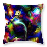 B497076 Throw Pillow