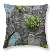 Babbacombe Devon Throw Pillow