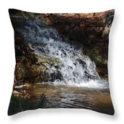 Babbling Brook 2013 Throw Pillow