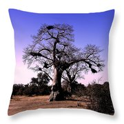 Babobab Tree Throw Pillow