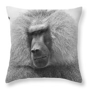 Baboon In Black And White Throw Pillow