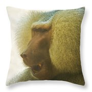 Baboon In The Sun Throw Pillow