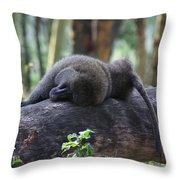 Baboon Sleeping Throw Pillow