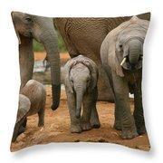 Baby African Elephants II Throw Pillow