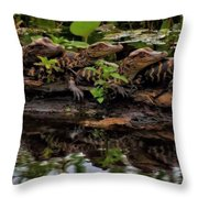 Baby Alligators Reflection Throw Pillow