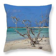 Baby Beach With Driftwood Throw Pillow