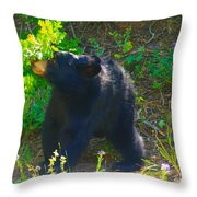 Baby Bear Cub Throw Pillow