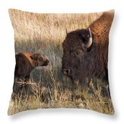 Baby Bison Meets Daddy Throw Pillow