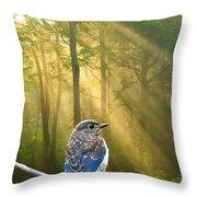 Baby Blue In Morning Fog Sunlight Throw Pillow