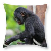 Baby Bonobo Throw Pillow